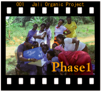 FEHP_jali_phase1s